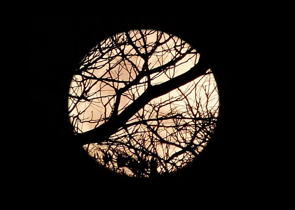 full moon august - photo #17